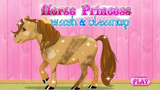 horse princess wash and cleanup