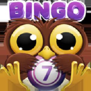 bingo crack GameSkip