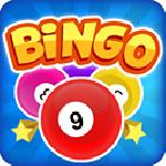 bingo multiplayer GameSkip