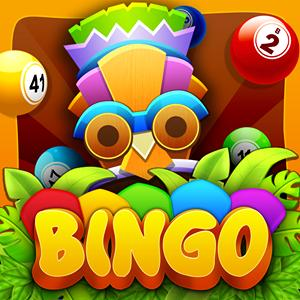 bingo new GameSkip