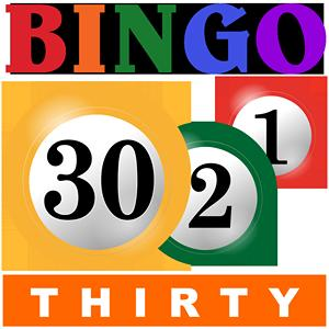 bingo thirty GameSkip