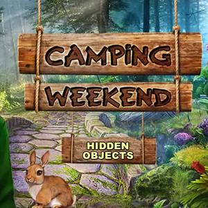camping weekend GameSkip
