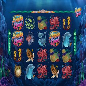 dolphin quest GameSkip