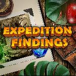 expedition findings GameSkip