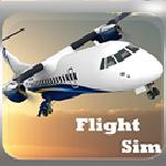 flight sim simulation 3d GameSkip