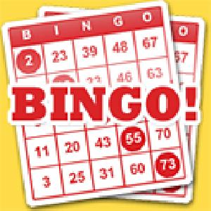 bingo game point GameSkip