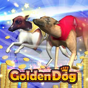 golden dog 3d