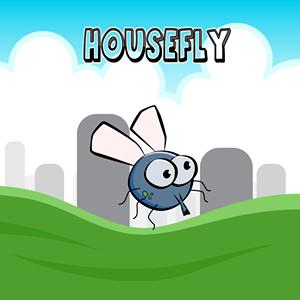house fly GameSkip