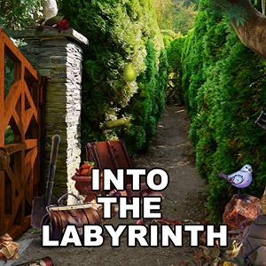 into the labyrinth GameSkip