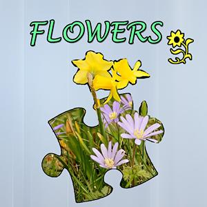 jigsaw puzzle flowers GameSkip