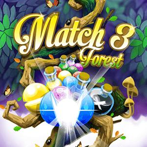 match in forest GameSkip