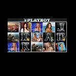 playboy slot GameSkip