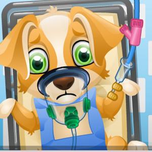 puppy surgery GameSkip