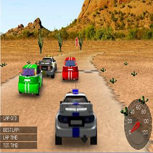 rally racing GameSkip