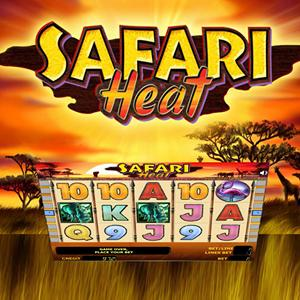 safari heat GameSkip