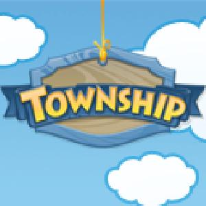 township GameSkip