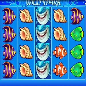 wild shark GameSkip