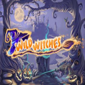wild witches GameSkip